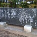miyazawa_youganryu