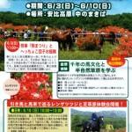 馬と芝とレンゲツツジ祭2018