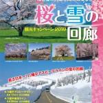 桜と雪の回廊2019